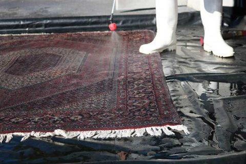 قالیشویی در حسن آباد